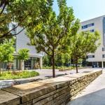 UCSF Slideshow Add 4